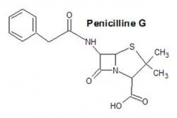 Wat is penicilline